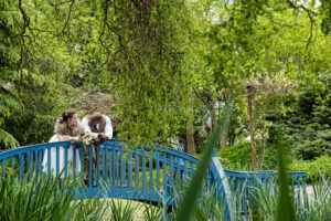 Engage Weddings – Flaxbourne Shoot – An elegant wedding embracing the outdoors