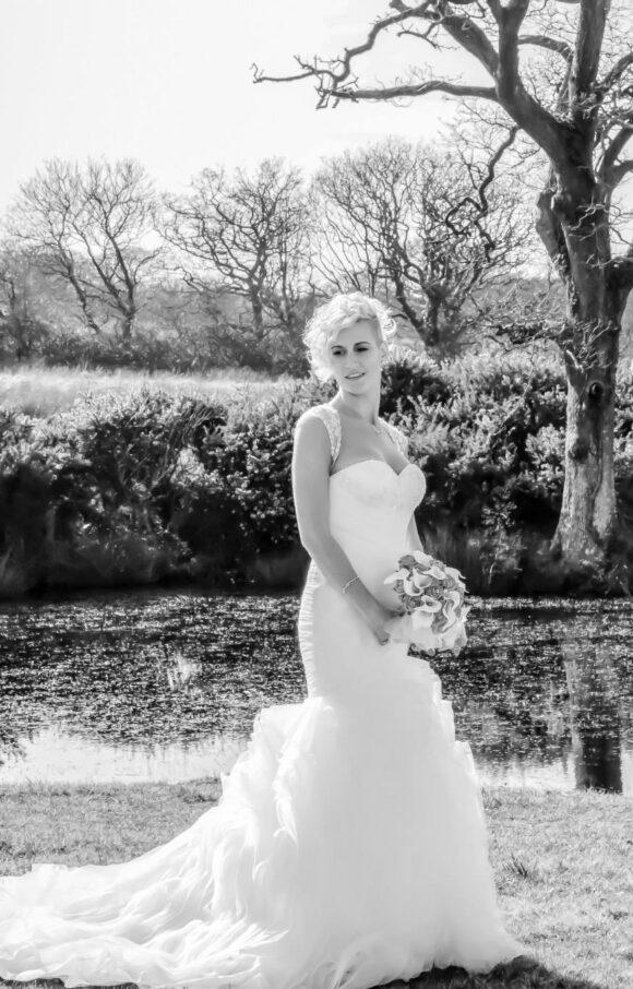 Pronovias   Wedding Dress   Fit to Flare   C2241