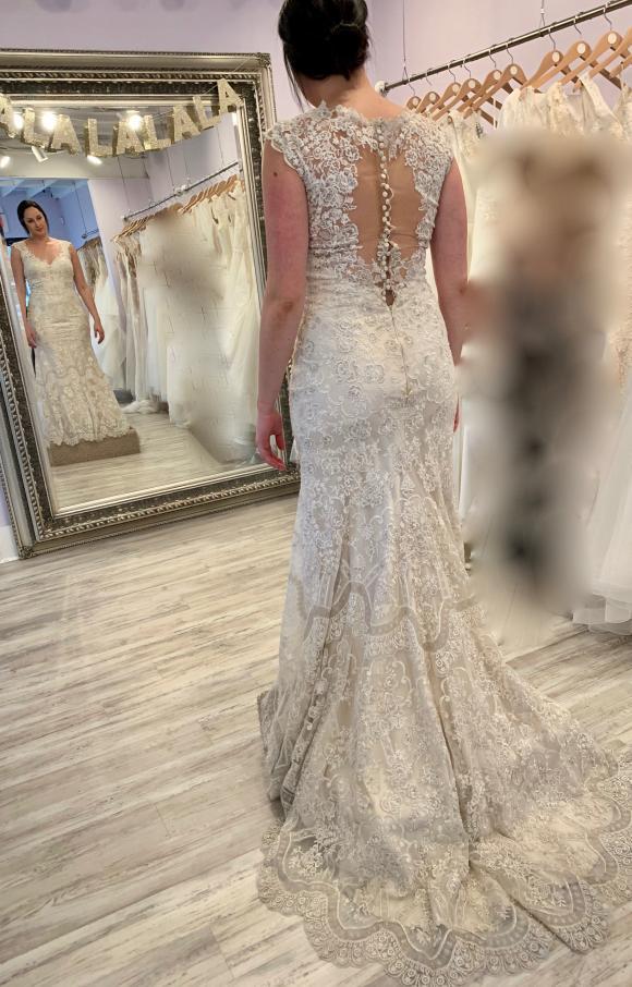 Eddy K | Wedding Dress | Fit to Flare | C2421