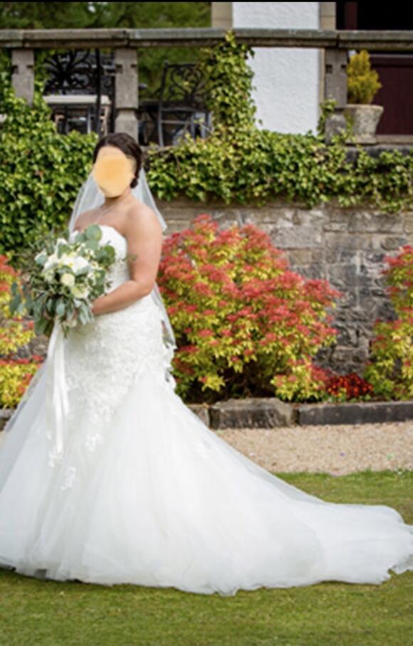 Sophia Tolli | Wedding Dress | Drop Waist | C2550
