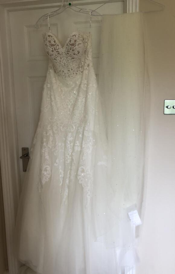 Stella York   Wedding Dress   Fit to Flare   C2601